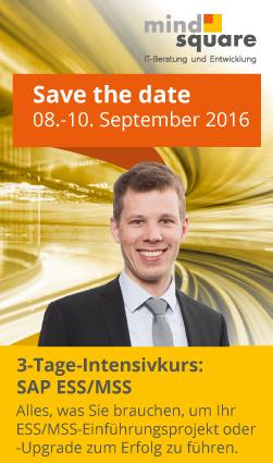 SAP ES/MSS Intensivkurs