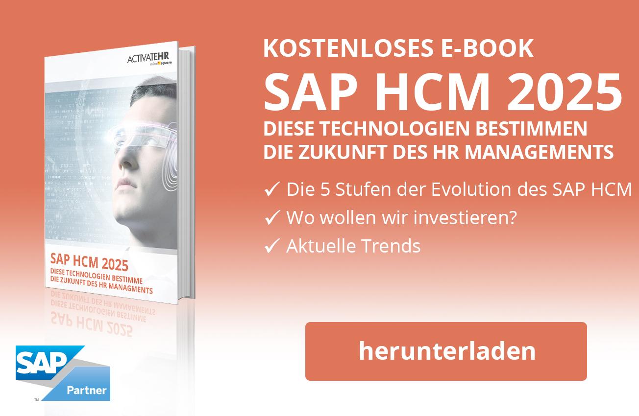 SAP HCM Überblick E-Book