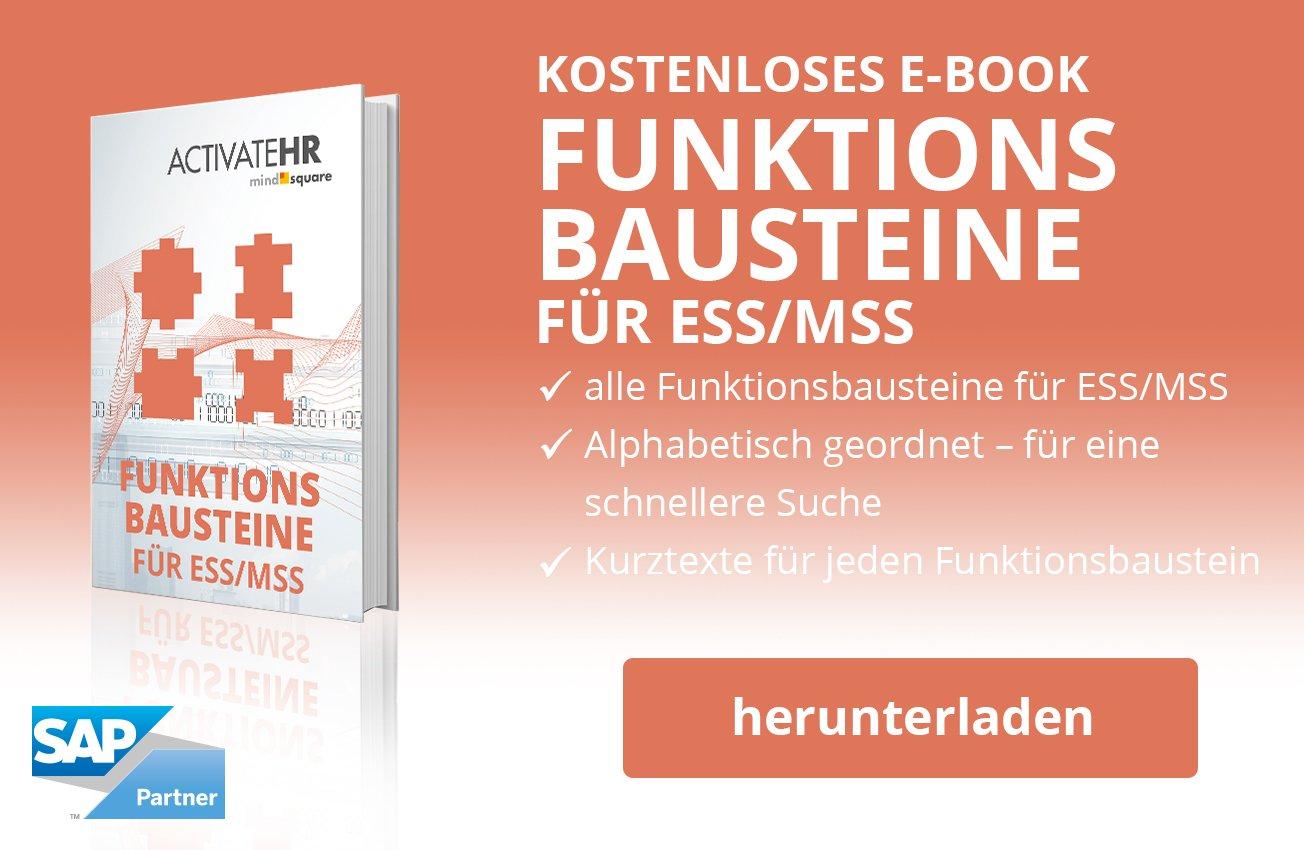 E-Book Funktionsbausteine