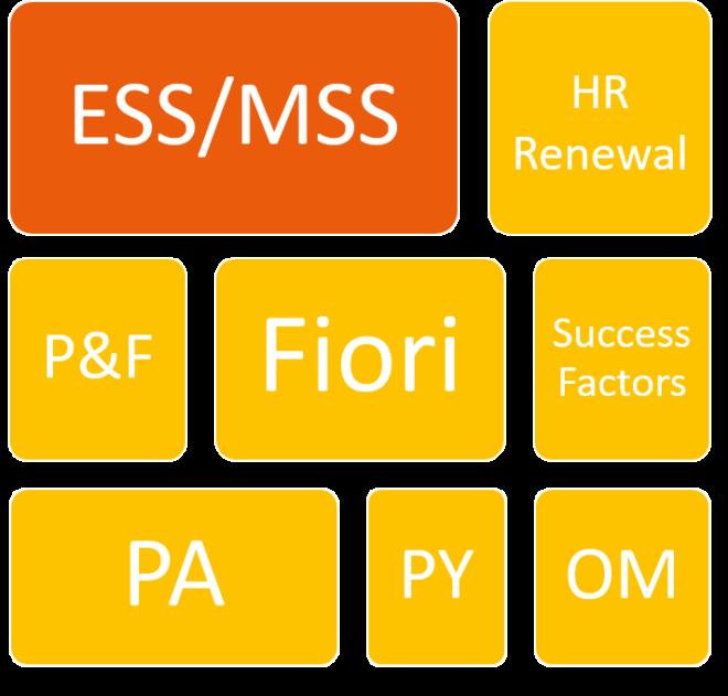 Digitalisierung der HR Abteilung