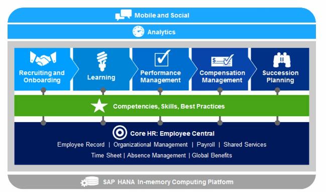 SAP SuccessFactors Performance & Goals - Die SAP HR/HCM Berater